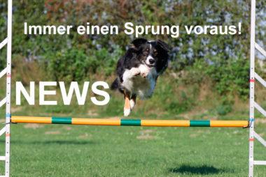 NEWS - bleib informiert